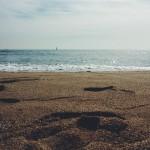 Barcelona_beach / strand