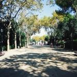 Barcelona_parc / raus in die natur